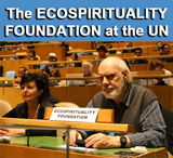 The Ecospirituality Foundationa at the UN